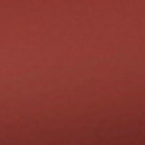 Torus-2-Liter-Pet-Water-Bowl-Red