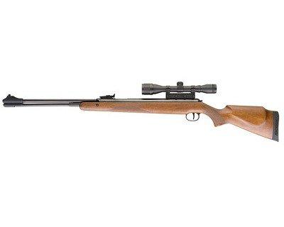 RWS Model 460 Magnum .22  Caliber Pellet Airgun Combo (4x32x 40mm with Mount)