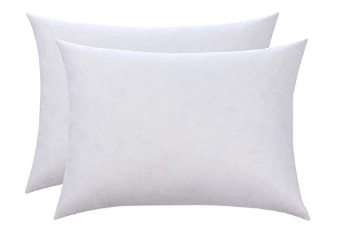 L' COZEE 100% Cotton Cover, Feather & Down Pillow, Best use for Decorative Pillows & for Firm Sleepers, Dust Mite Resistant (not Polyester Filled) Size 12x16 - Set of 2 ()