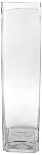 (WGV Clear Large Square Block Glass Vase, 6 by 20-Inch)