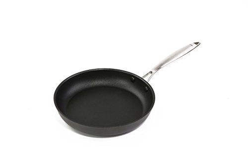 Nonstick frying pan Hard Anodized Aluminum Induction Stainless Steel handle Dishwasher Safe PFOA Free 9.5-Inch Fry Pan Gray