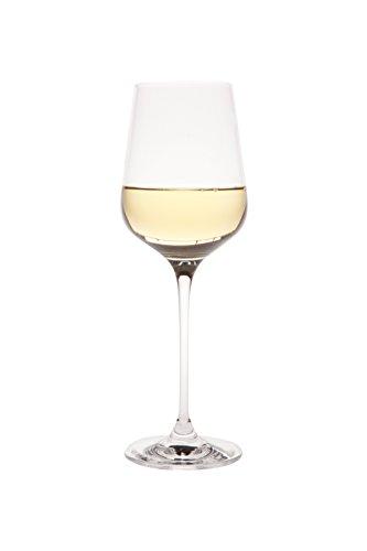 Berghoff Chateau 12 Oz White Wine Glass (6X), Clear ()