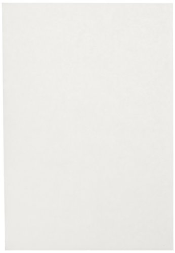 Sax Sulphite Drawing Paper, 70 lb, 12 x 18 Inches, Extra-White, Pack of 500 ()