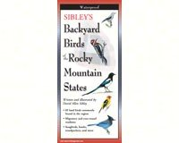 - Steven M. Lewers Earth Sky Water LEWERSBBR123 Sibley's Backyard Birds of Rocky Mountain States