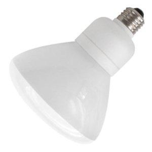 - TCP 2R4019DIM41k 19-watt 4100-Kelvin R40 Dimmable Reflector Floodlight