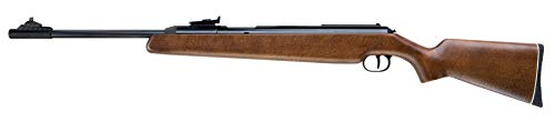 Diana RWS Model 48 Spring Powered Hardwood Stock Pellet Gun Air Rifle, .22 Caliber, Gun Only