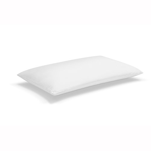 Sleep Innovations Classic Memory Foam Pillow with Microfiber Cover, Made in The USA with a 5-Year Warranty - Queen - Memory Queen Foam Size Pillow