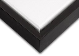 16 X 16 Canvas (Creative Mark Illusions Wood Floater Frame for 3/4 Inch Canvas 16X20 - Black &)
