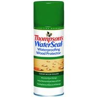 Thompson's Water Seal TH.041800-18 Wood Protector-Clear Aerosol Waterproofer, ()