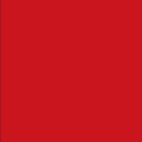 PALOVUE-Earflow-in-Ear-Lightning-Headphone-Magnetic-Earphone-MFi-Certified-Earbuds-with-Microphone-Controller-Compatible-iPhone-XXSXS-MaxXR-iPhone-8P-iPhone-7P-Metallic-Red