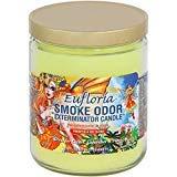 Smoke Odor Exterminator 13 oz Jar Candles Eufloria, (3)