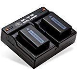 Pack de 2 de NP-FW50 Baterías y doble cargador de batería para SonyDSC - RX10/B, DSC - RX10 II, DSC - RX10 III, Alfa A6300,...