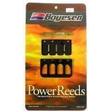 Pwc Reeds - APRILIA Power Reed Kit 50 Scarabeo 2001 / SR50 ditech 2007 Motorcycle / ATV Boyesen 6107