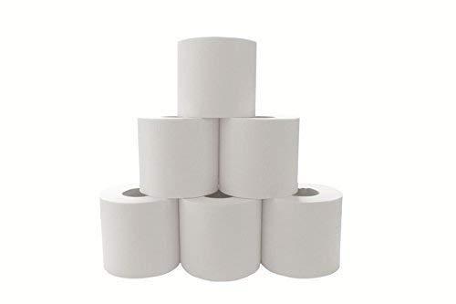 Toiletpapier – 2-laags – wit – premium kwaliteit (2112 rollen)