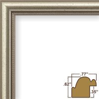 OKSLO Craig Frames Stratton, Aged Pewter Queen Ann Picture Frame, 14x22 Inch