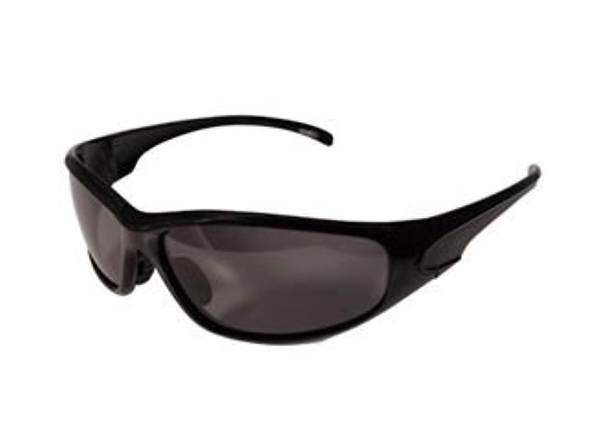 [해외] 스피드 피트 바이커의 썬글라스 BH-A실리즈 프레임:블랙/렌즈:스모크 편광