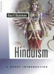 img - for Hinduism A Short Introduction book / textbook / text book