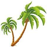 TOOGOO(R) Coconut Palm Tree sticker Tropical Beach Kid Children Wall Decal ()