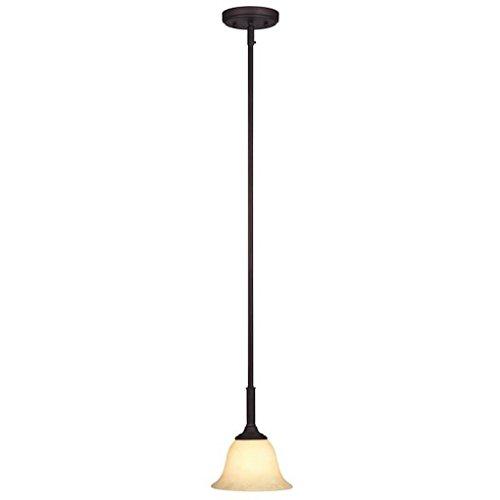 (Westinghouse 62217 - 1 Light (Medium Screw Base) 7