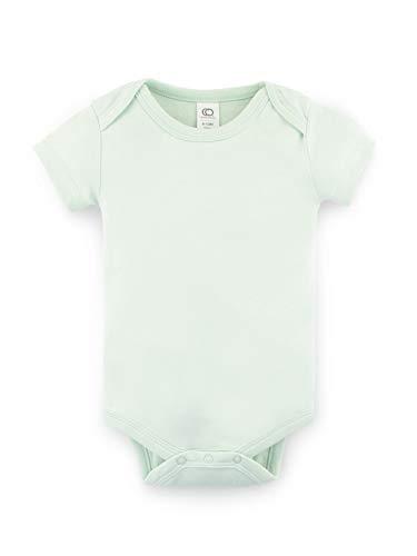10a29cee3 Jual Colored Organics Unisex Organic Baby Bodysuit - Short Sleeve ...