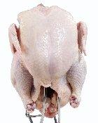 Buddhist Style Organic, White, Chicken, 3.5 Lbs Avg.