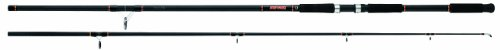 Daiwa Beefstick Surf Spin Rod, 2 Piece (10-Feet/14-40-Pounds, Black), Outdoor Stuffs