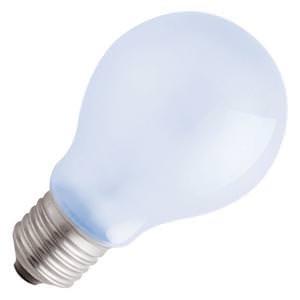 2496 Standard Daylight Full Spectrum Light Bulb ()
