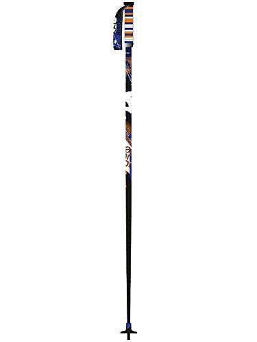 Salomon Brigade Skiing Pole (Black/Orange, 105)