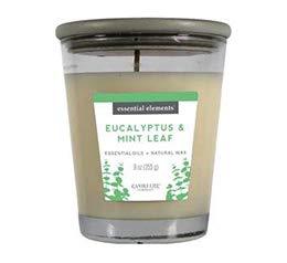 Candlelite Bougie 255 Grs Eucalyptus /& Feuille de Menthe