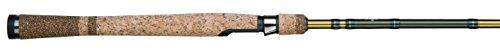 Fenwicks Eagle Telescopic Trolling Fishing Rod