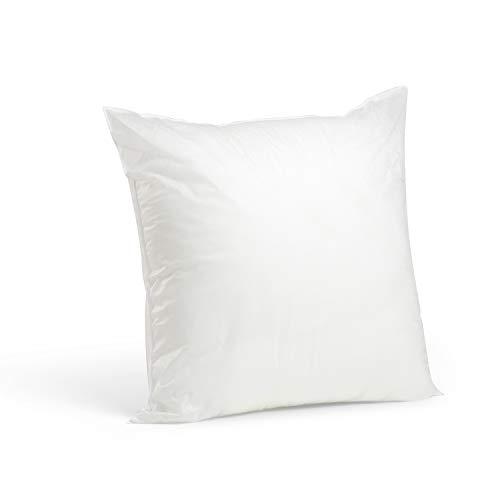 Foamily Premium Hypoallergenic Stuffer Pillow Insert Sham Square Form Polyester, 20 L X 20 W, Standard/White