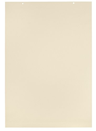 Paper Manila Tag Chart (School Smart Tag Chart Paper - 2 feet x 3 feet - 1 inch Rule - Pack of 36 Sheets - Manila)
