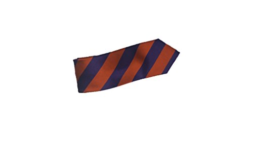 Robert Talbott Orange and Purple Stripes Silk -