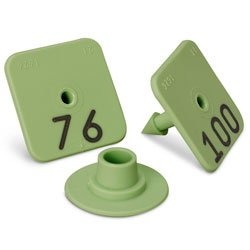 Allflex Numbered Piglet Male Tags - 76-100 Green - C31222(D)N