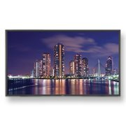 (NEC 55‑inch LED – MultiSync flat panel display ‑ P552‑AVT ‑ 1080p HDTV)