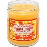 Smoke Odor Exterminator 13oz Jar Candles (Fall N Leaves, 2)