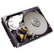 Sas Nhp Hdd - 42D0669 IBM 146-GB 15K 2.5 SAS NHP HDD