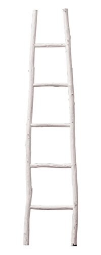 (Creative Co-op Decorative Painter Wood Blanket Ladder, White)