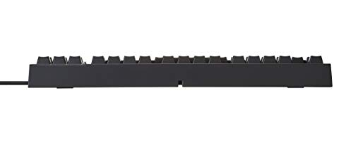 REALFORCE R2 PFU Limited Edition Keyboard (Mid, Black, 45G) by Fujitsu (Image #4)