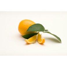 Meyer Lemon - Avg 10 Lb Case