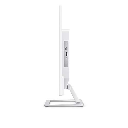 Dell Monitor FHD VESA