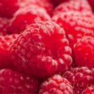 Fresh Raspberry ketones capsules work better as a diet pill and fat burner.