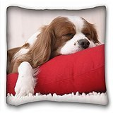 Best My Honey Pillow The Grandparent Gift Dog Picture Frames - My Honey Pillow Pillow Cover dog puppy s Review