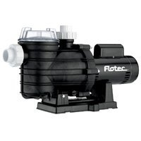 Amazon Com Sta Rite Industries Fpt20510 Pool Pump 1hp