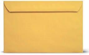 6 x 9 Brown Kraft Envelopes Booklet-Open Side Envelopes-50 Pack (Brown Kraft) ()