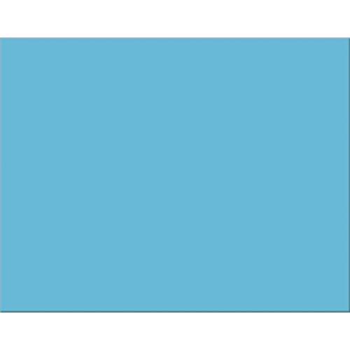 Pacon PAC54841 4-Ply Railroad Board, Light Blue, 22