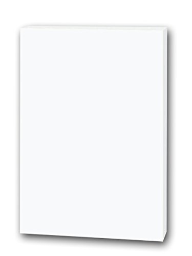 Flipside Products 20300 Foam Board, 20 x 30, White (Pack of 25), Model:20300, Office Accessories & Supply Shop