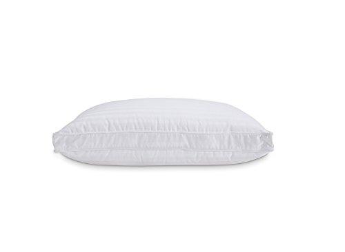 Down Home Layers Pillow 2 Piece Set Standard (2 Chamber Pillow Top)