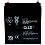 Casil 12v 4ah UPS Power Patrol for SLA1056