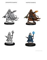 Pathfinder: Deep Cuts Unpainted Miniatures: Evil Wizards